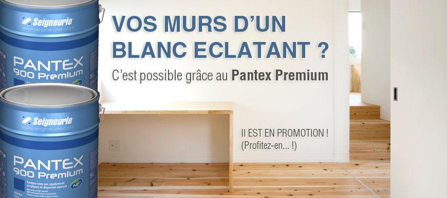 Murs blancs Seigneurie Pantex 900 blanc Premium Promotion