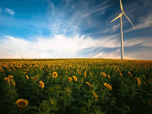 Produits Eco - Biofa - Moins de 1 gr/l - 9